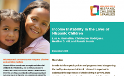 Cover of Income Instability PDF
